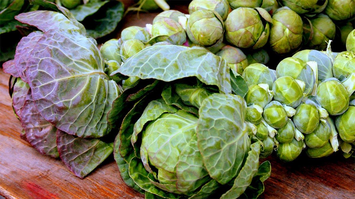 Ushqimet Më Të Mira Kundër Simptomave Të Reumatizmës