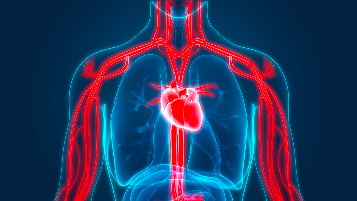 Si Ndikon diabeti (sëmundja e sheqerit) (sëmundja e sheqerit) Tek tensioni i lartë i gjakut – Çfarë nevojitet të bëni